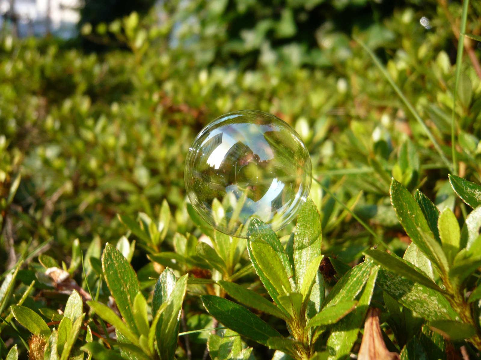 Bubble_2