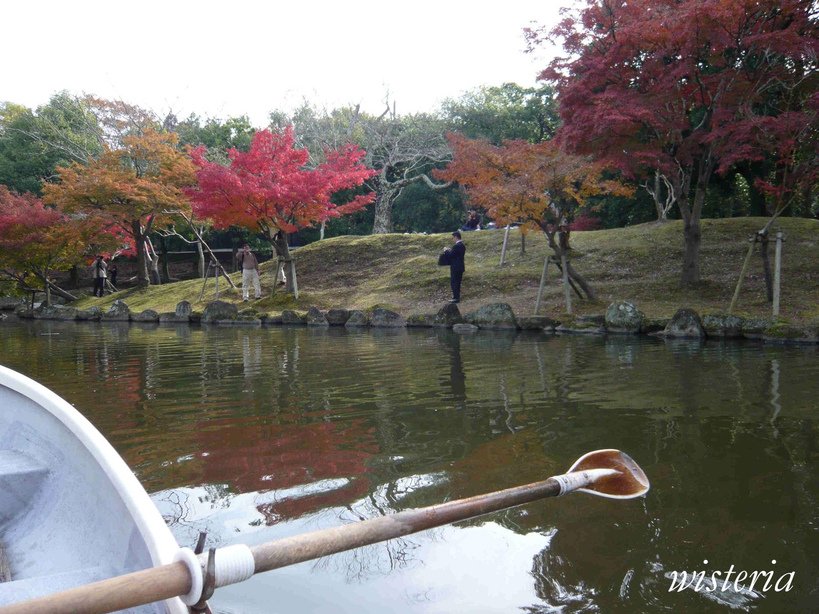 Pond_5